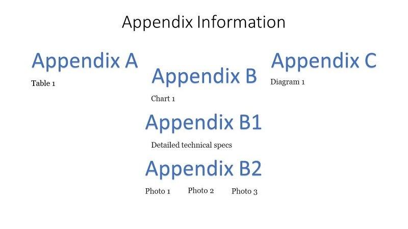 appendix info